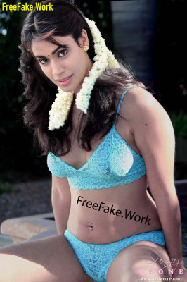 Kanishka-Hot-Stills-in-bra-and-panties-without-saree.md.jpg
